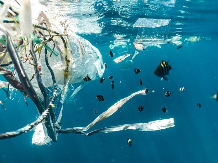 Idean un nuevo sistema de contención que evita que los residuos acaben en el mar y en los ríos. Se trata en un sistema de mallas colocado en los colectores de agua residuales que permitirá recoger entre 3 y 5 toneladas de residuos urbanos anuales en cada punto instalado.